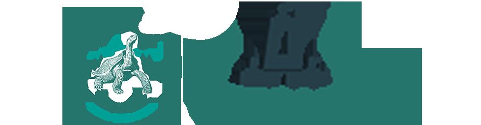 Viva Ecuador