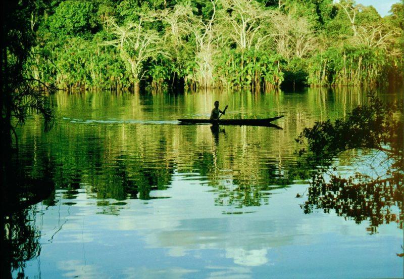 AMAZONAS FOTO2