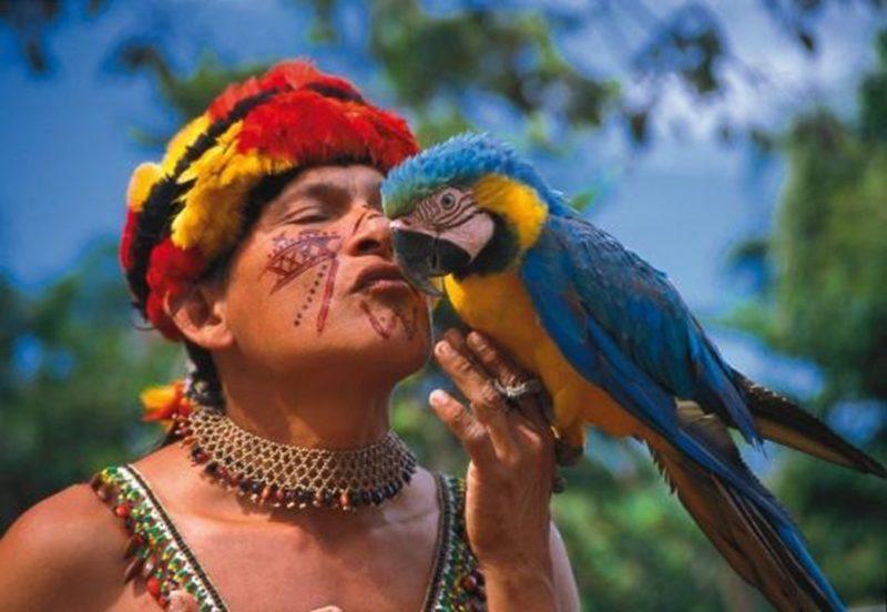 amazonas foto